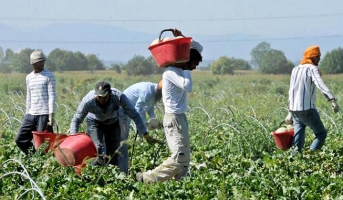Covid-19 e piena attuazione della legge 199/16 per un lavoro agricolo di qualità
